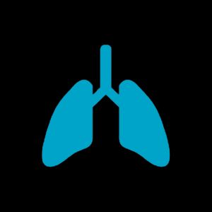 Lungs Poseidonia Healthcare